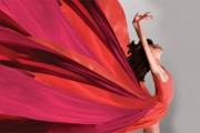 Большой балет 2015 канал культура