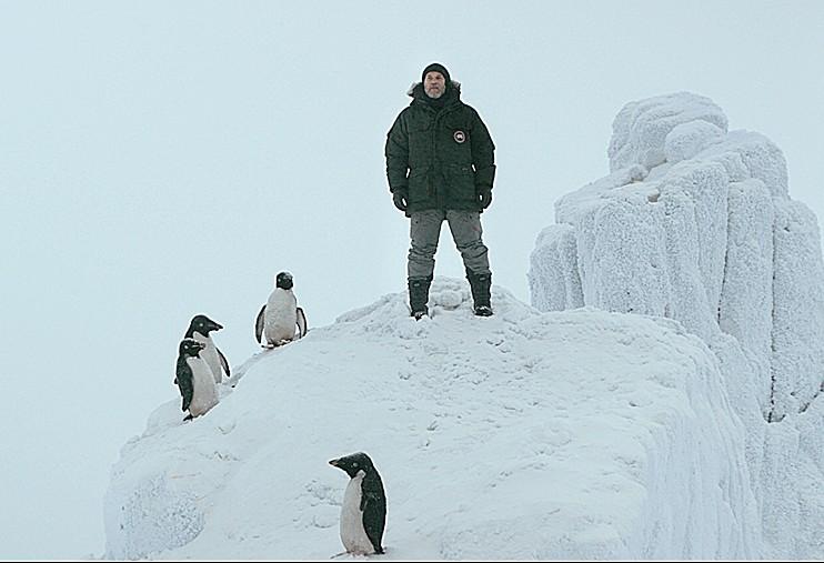 Фильм Пингвин нашего времени in2