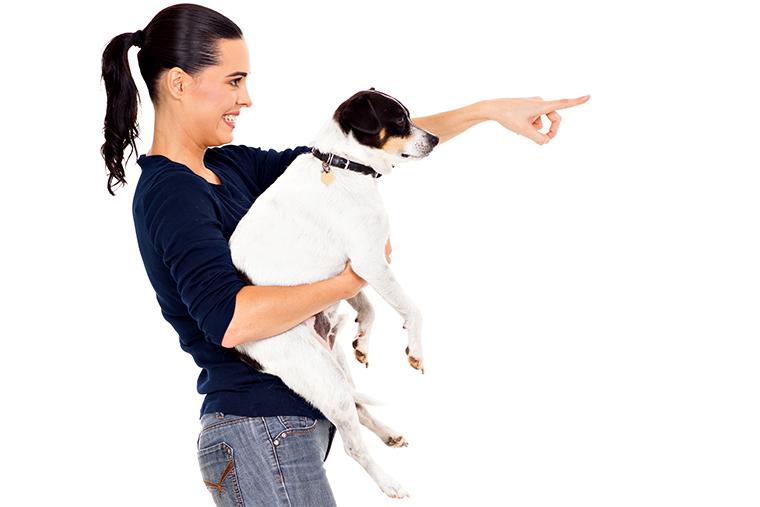 Как дрессировать мужа и собаку Ева Кац in