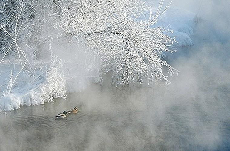Природные зрелища_Иней и туман2