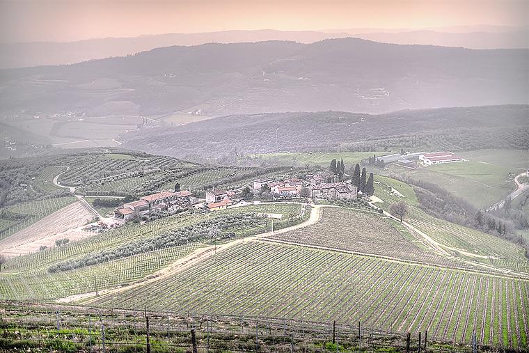 Виноградники Ca'Botta в зоне Вальполичелла ДОК