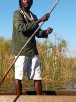 Палка в руках - поло, лодка - макора. Ботсвана, дельта реки Окаванга