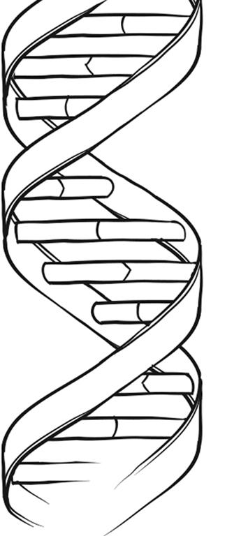 ген-3