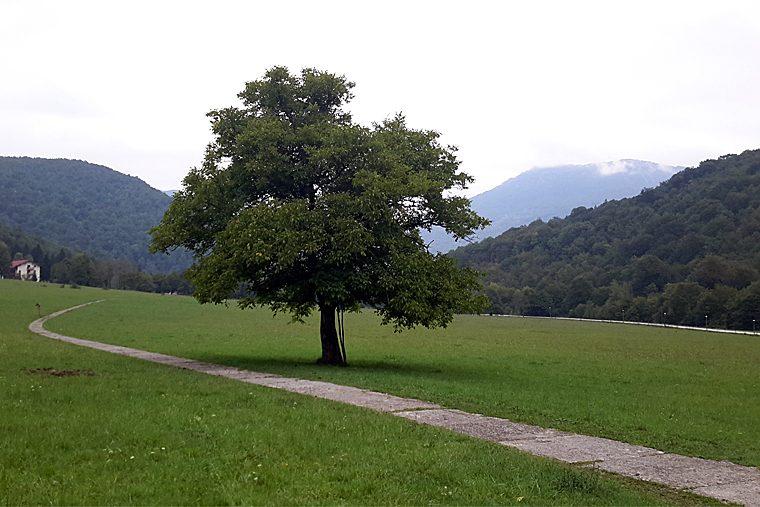республика Сербская Национальный парк Сутьеска 4
